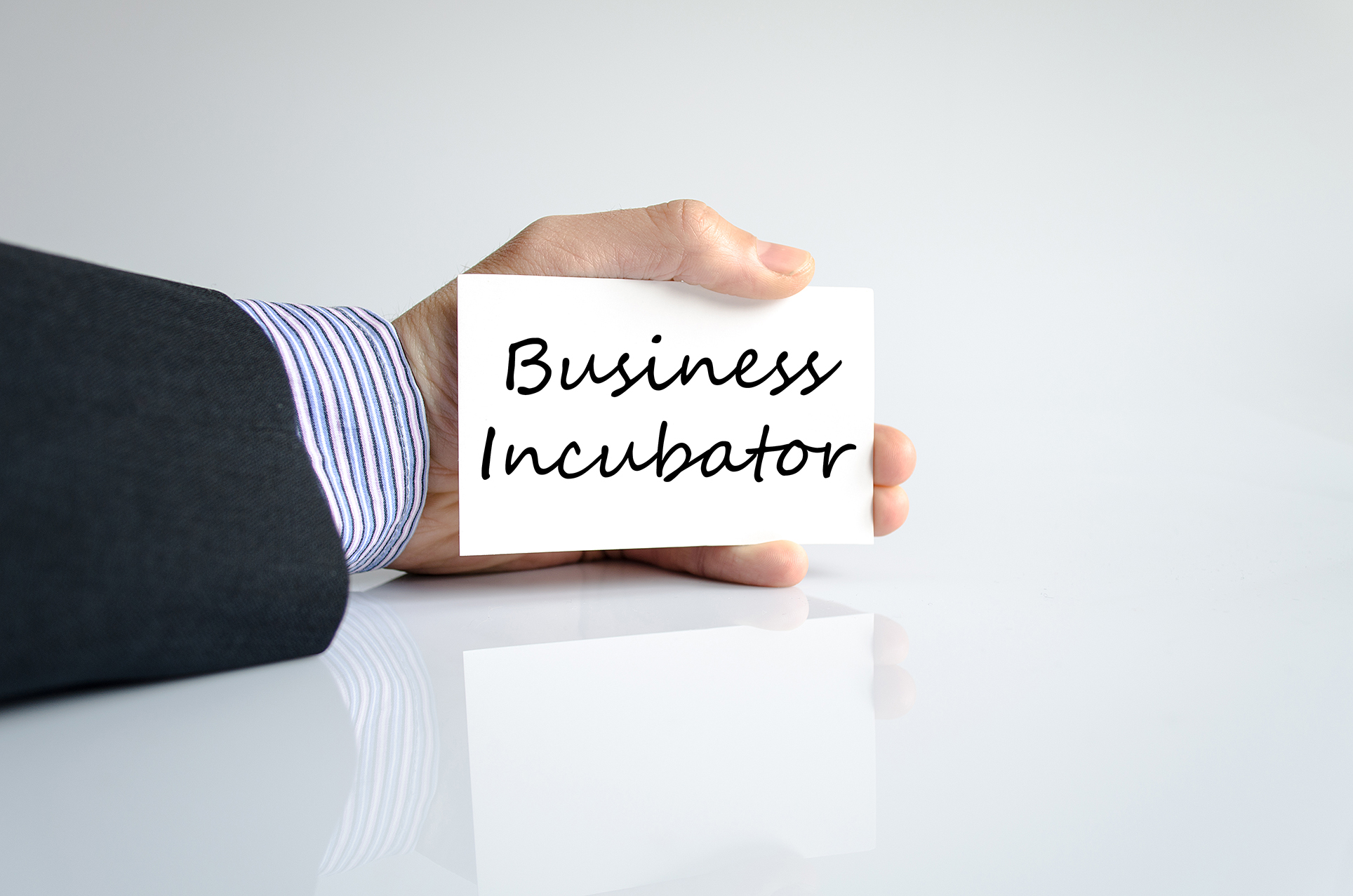 incubator definition